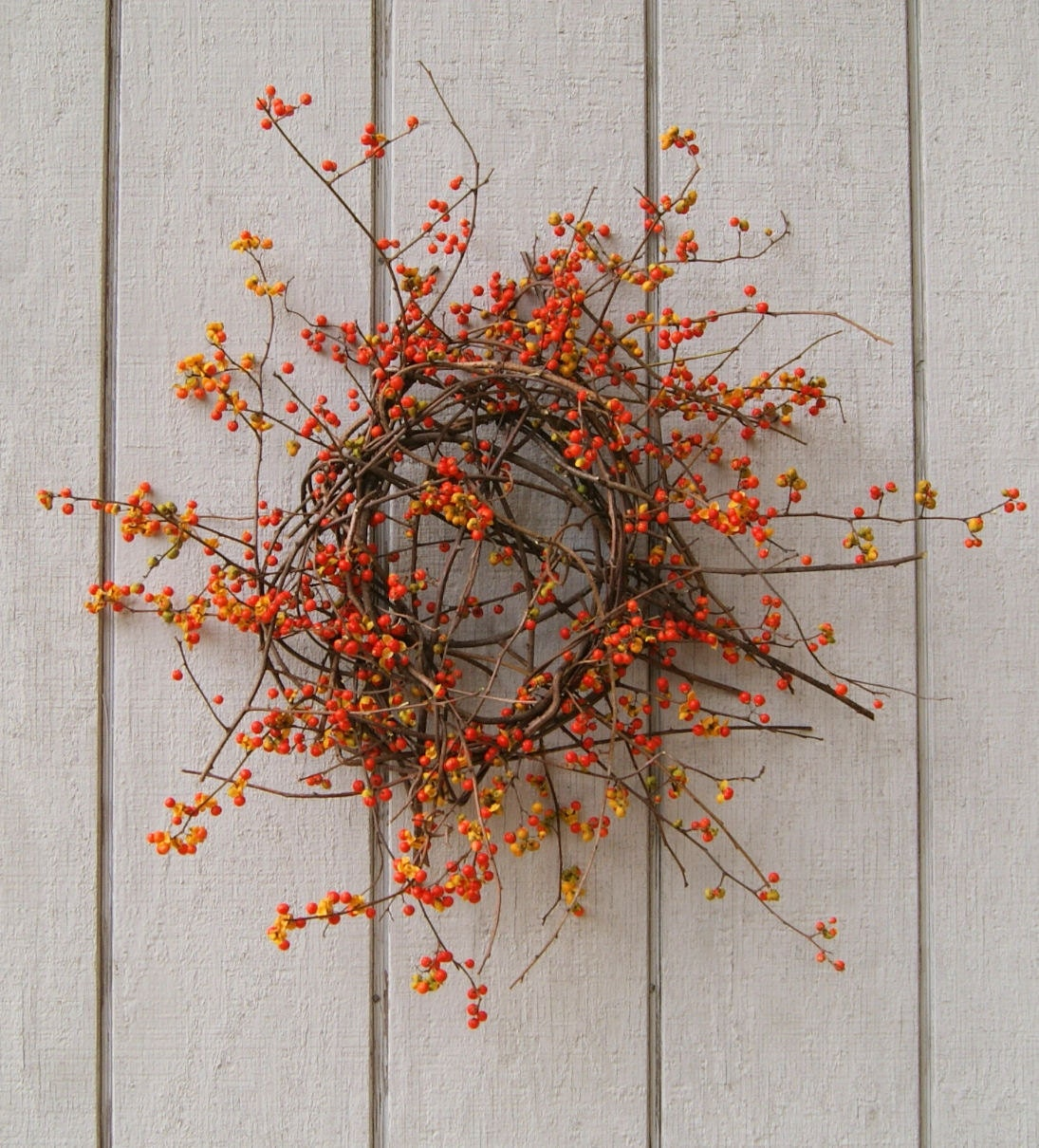 Fresh Bittersweet Wreath Fall Wreath Bittersweet Vine And