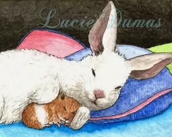 ACEO art print Hare 30 bunny rabbit hamster by Lucie Dumas