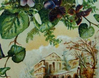 Rare Antique  Lion Coffee Trading Card
