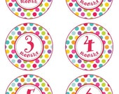 Baby Month to Month Stickers, Monthly Birthday Stickers for Baby, Polka Dot Photo Prop Birthday Stickers, Chevron and Blue