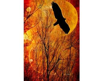 Flying Eagle Art, Southwestern Wall Hanging, Bird Silhouette, Autumn Fall, Orange Yellow Moon, Woodland Animal, Home Decor, Giclee Print