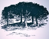 Under the Cool Pines Original Screenprint