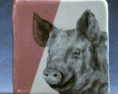 Hand Painted Farm Pig Portrait Wall Tile Pastel Pink