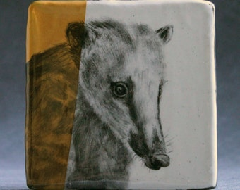 Hand Painted Coati Portrait Wall Tile Deep Yellow