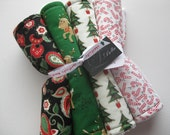 """Baby Burp Cloth Set of 4 """"The Night Before Christmas"""" Paisley Rudolph Candy Cane Gender Neutral Boy Girl Holiday"""