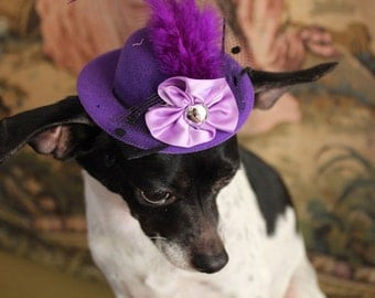 Purple   color   mini  hat with   feather and   flowers for dog or cat