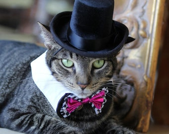 """The Aristocrat black top hat for cats and dogs with 6-12"""" collar size"""