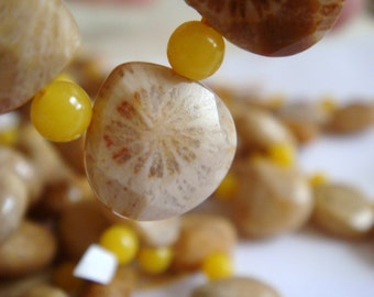 19. Petoskey Fossil 12x12mm Faceted Briolette Shape 8 Inches Strand 18pcs Stone Bead