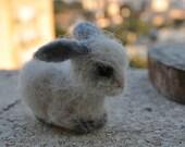 Needle Felted  bunny. Basket bunny
