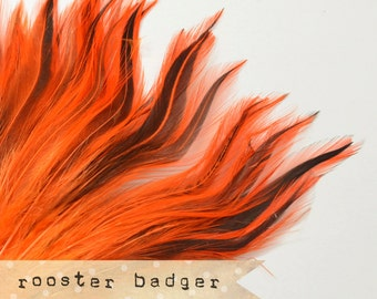 35-40 pcs - Rooster Badger Saddle - Orange - stripes, exotic feathers