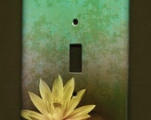 Lotus Switchplate cover