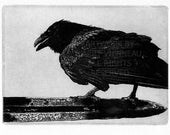 Raven artwork , Raven, crow,  Etching, . 5 inch x 7 inch 2013