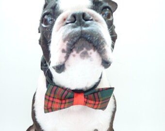 """Classic Christmas Pet Bow Tie / The """"BUBBABOW"""" Tie for Happy Pets in Tartan Green Red and Black"""