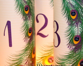 15 Peacock Luminary Table Numbers - 8.5 inch - Centerpiece Wedding Reception