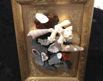 Collage of mica, stone, driftwood, pearl on pine