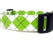 Argyle Dog Collar - Lime Argyle