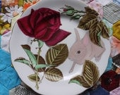 Stunning Rose Floral with Wild Bunny Vintage Illustrated Plate
