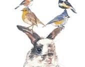 Original Rabbit and Bird Watercolor, Tufted Titmouse, Robin Watercolor, Chickadee painting, 8x10