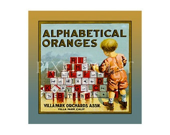 Small Journal - Alphabetical Oranges- Fruit Crate Art Print Cover