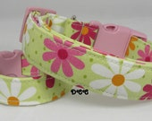 Dog Collar Gerber Daisy Floral Flowers Pink White Orange Green Fun CHOOSE SIZE Adjustable DogsCollars D Ring Accessories Accessory Pet Pets