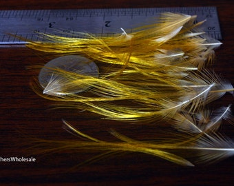 golden pheasant feathers natural gold feather yellow crest feathers dolls hair delicate small micro feathers short craft feathers, 20pcs
