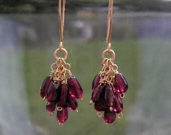 Red Garnet Cluster Earrings Delicate 14k Gold Fill Earrings Small Gemstone Dangles January Birthstone Garnet Jewelry