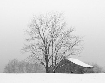 black and white photography, winter photography, landscape photography, winter landscape, snow photography, barn photography, rural