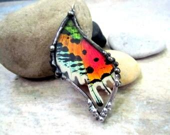 Madagascan Sunset Moth Necklace
