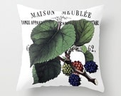 Throw Pillow Cover - Mulberry on Vintage Text - 16x16, 18x18, 20x20 - Pillow case Original Design Home Décor by Adidit
