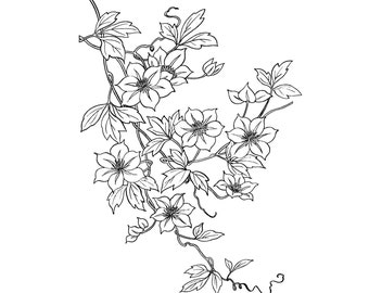 Flowering Vine // FLONZ Clear stamp clingy acrylic