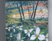 Trillium Sunrise Tile Marquette,Mi