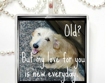 Cherish your senior dog glass tile pendant