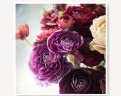 radiant orchid ranunculus purple flower photo,jewel tones deep red flower print, pretty home decor, still life, flowers, floral