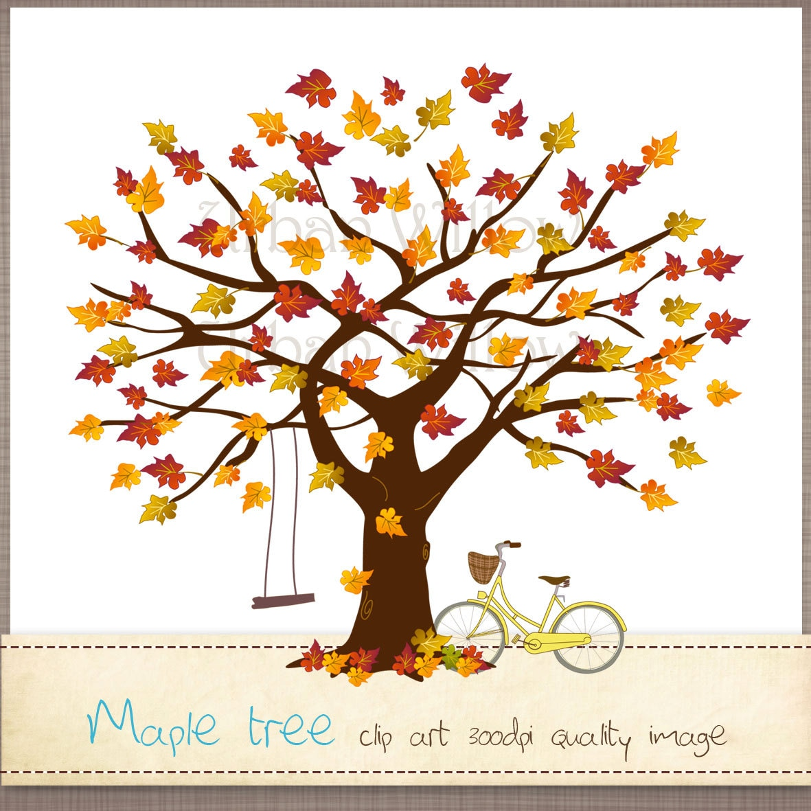 MAPLE fall tree 5 x Png & Jpeg clip art images. by urbanwillow