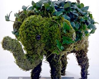 Moss Topiary Elephant Planter - Modern Home & Garden Decor - Party Centerpiece  - Ready to Ship