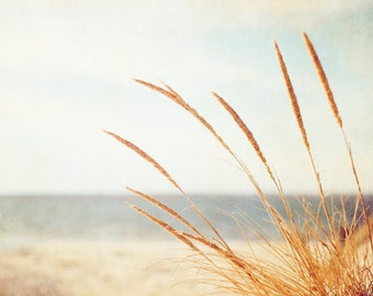 "Beach Grass Photography - large print neutral light brown white coastal wall art seashore art country rural, 8x10 Photograph, ""Warm Breeze"""