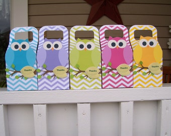 Rainbow Owls Favor Large Boxes  Set of 10