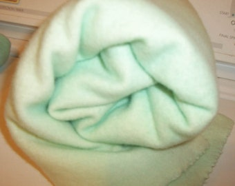 Seafoam - mint Green 2 Hand-dyed Felted/fulled 100%  Pendleton Wool