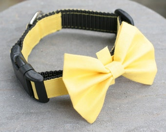 "Ready To Ship 1"" Dog Collar Only no bow tie - Yellow"