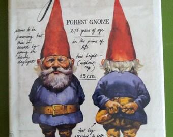 Vintage gnome book, gnomes