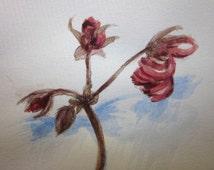 Steadfast.  Small botanical illustration, romantic art, dried geranium flower stem, acrylic, pencil drawing, 6x4 inch, SFA