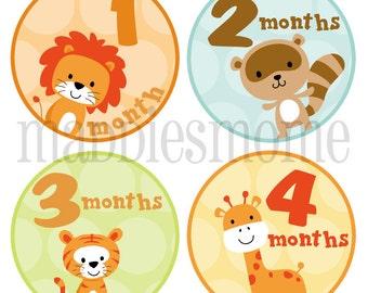 Monthly Baby Stickers Gender Neutral, Milestone Stickers, Baby Month Stickers, Monthly Stickers Bodysuit Sticker Lion Giraffe (Zoo Animals))