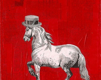 Blank greeting card: Horse's Straw Hat