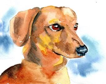 Golden Dashchund watercolor portrait