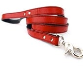 Minimalist Leather Dog Leash - Renegade Red