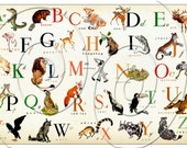 Super Size It On Canvas - ENGLISH or French  Alphabet  - 36 x 24 on Stretched Canvas -Wonderful Animal  L'alphabet en français