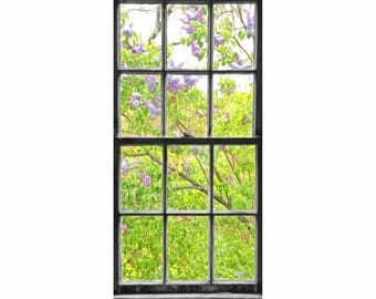 Lavender and Green Lilacs in Bloom Through Black and White Antique Barn Window - Fine Art Photo