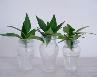 vintage mismatched small glass jar trio