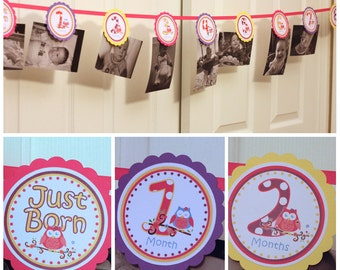 Owl Blossom Banner Owl Photo Banner 1 Year Photo Banner Girl Owl Birthday  - OWL Party 1st Birthday Girl DIY Printable (digital File) PDF