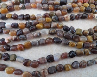 8mm A Grade Brazililian Petrified Wood Agate Polished Pebble Gemstone Beads, Full Strand (IND1C127)